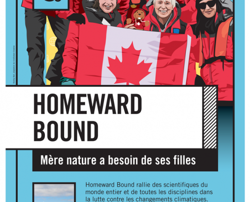 Image Affiche Français Homeward Bound